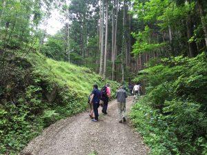 木のソムリエツアー第1回山を見る_03